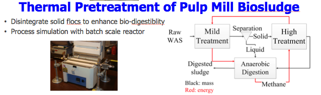 Thermal Pretreatment of Pulp Mill Biosludge