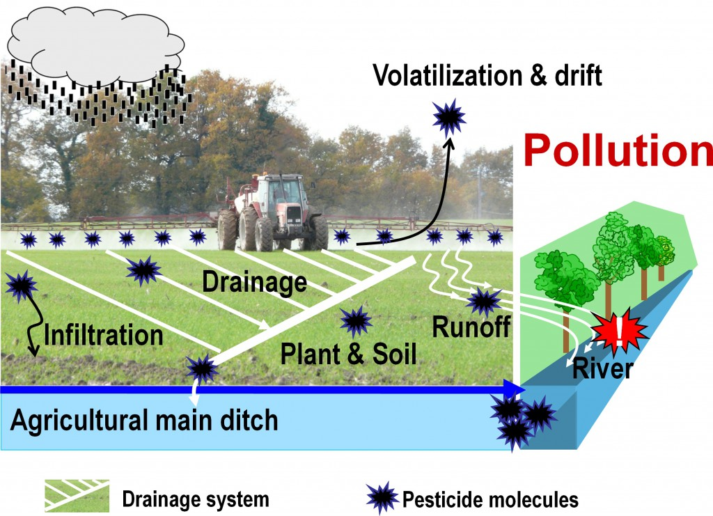 Pesticide application and transport in an agricultural watershed