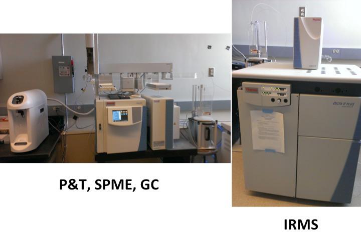 GC IRMS